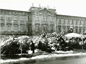 Weihnachtsbaumverkauf auf dem Schloßplatz im Schnee (StadtAE VI.A.b.1221)